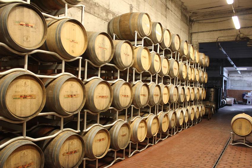 Itinerari del vino: i vignaioli di Grottaferrata e Castel De Paolis