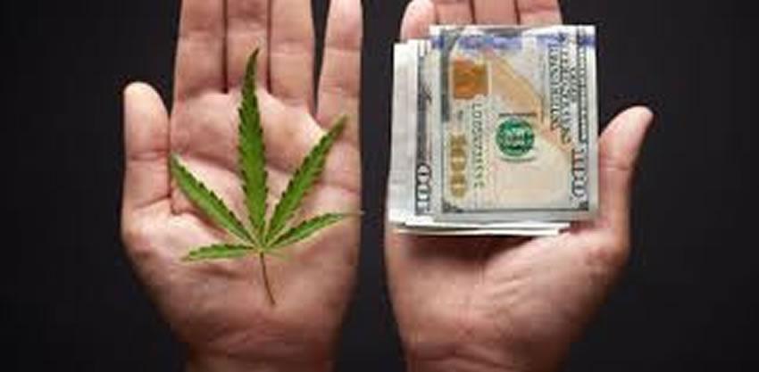La legalizzazione della Cannabis abbatterà il prezzo di vendita?