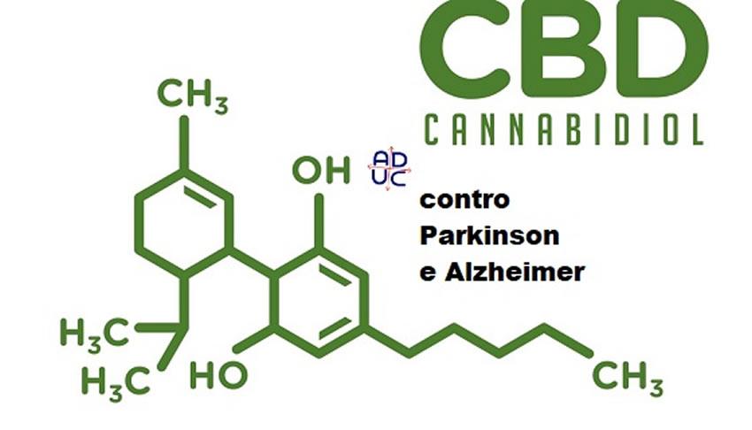 Thailandia: uno studio sulla Cannabis fa emergere gli effetti contro Parkinson e Alzheimer
