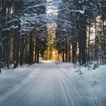 Maltempo: Cia, aree rurali ostaggio della neve. Subito piano di messa in sicurezza