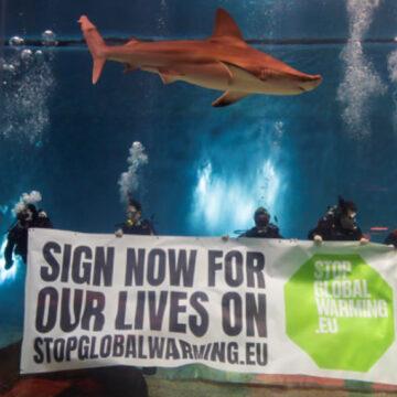 """""""CI SALVI CHI PUO'"""" – anche squali, pinguini, coralli e pesci dicono NO al riscaldamento globale"""