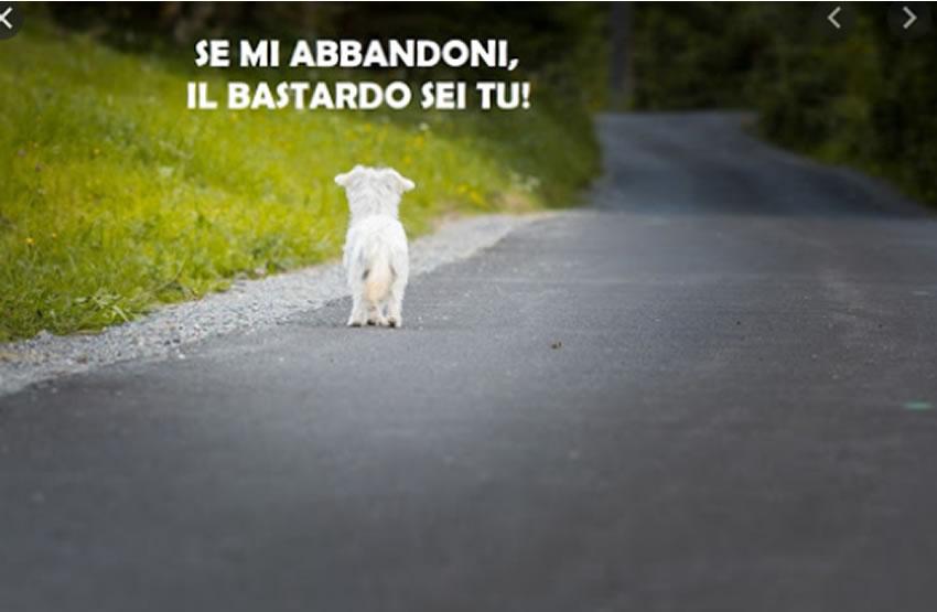 SE LI ABBANDONI, IL BASTARDO SEI TU